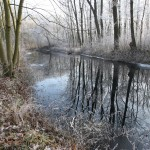 Winterlicher Floßgraben