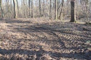 Von schweren Forstmaschinen zerfahrener und somit auf großer Fläche verdichteter Waldboden im Kanitzsch Frühjahr 2019